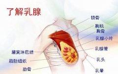 掌握乳腺炎早期症状好预防